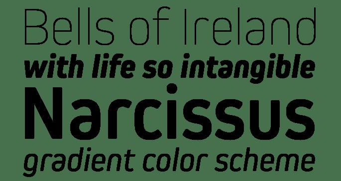new_fonts_kiro
